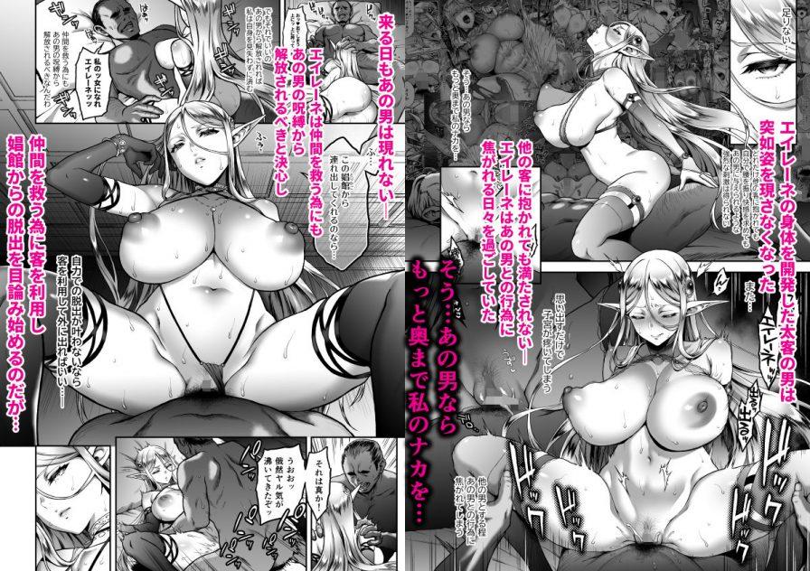 黄昏の娼エルフ5-娼婦にされた気高きハイエルフ3の無料画像2